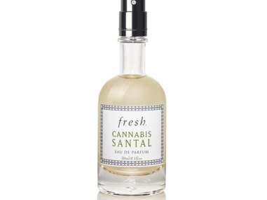 ces 5 parfums au chanvre vont vous faire planer tout l'été