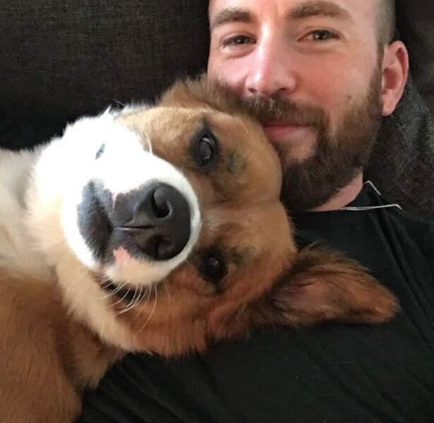 Aujourd'hui, Chris Evans est en couple... avec son chien