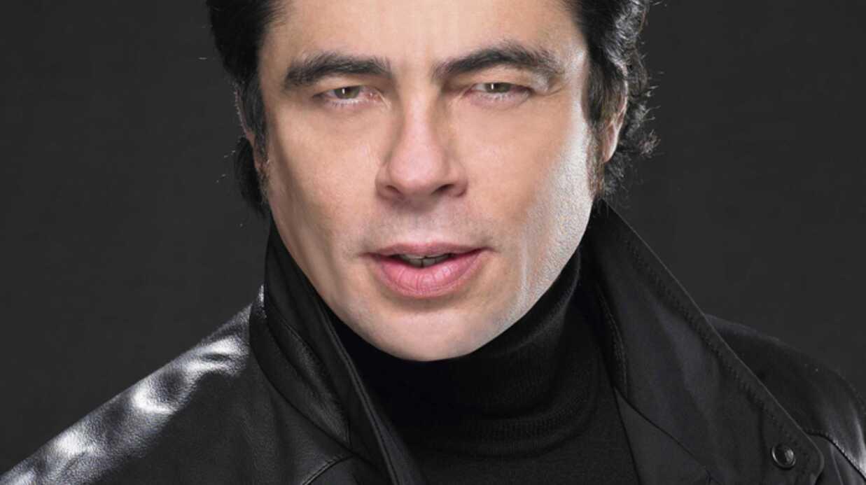 PHOTOS Benicio del Toro nouvelle égérie des glaces Magnum