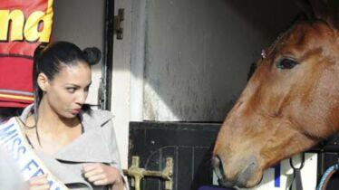 Le cheval, c'est pas son dada!
