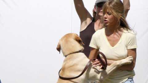 Jennifer Aniston Au pied, Marley!