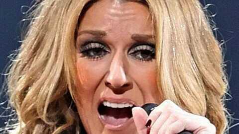 Céline Dion, trop occupée pour écrire ses propres textes