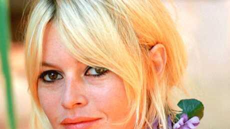 Brigitte Bardot dément toute relation avec Patrick Balkany