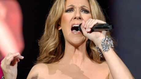Céline Dion a vu les forces de l'ordre débarquer lors de son dernier concert