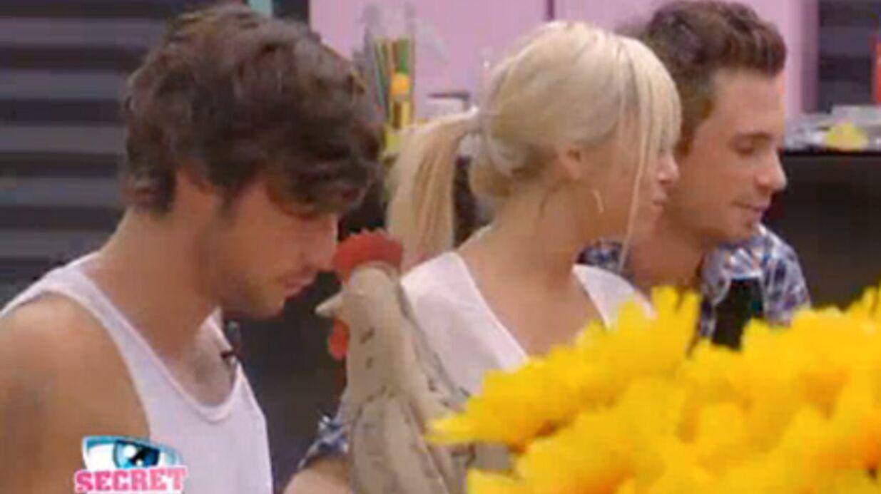 Secret Story 4: Stéphanie et Maxime ensemble, Robin anéanti