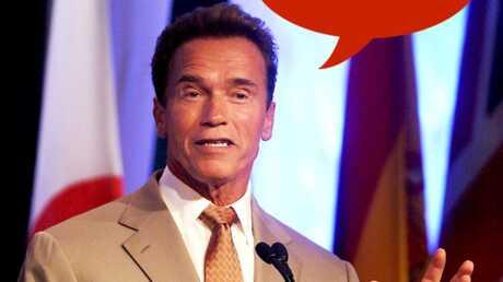 Arnold Schwarzenegger pourrait reprendre Terminator