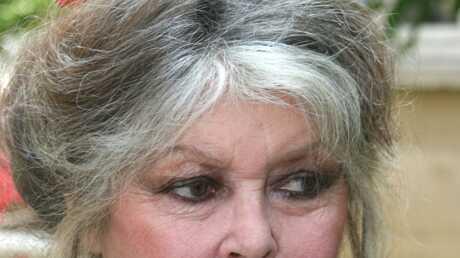 Brigitte Bardot Bientôt condamnée?