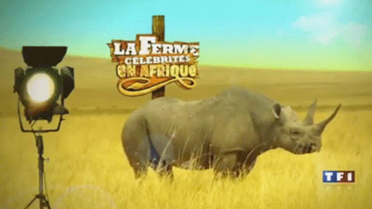 Pas de Ferme Célébrités 4 en 2011, selon Le Monde