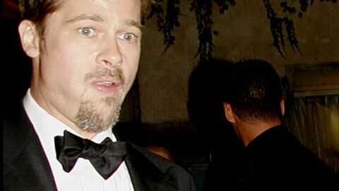 Brad Pitt, people dangereux pour les ordinateurs