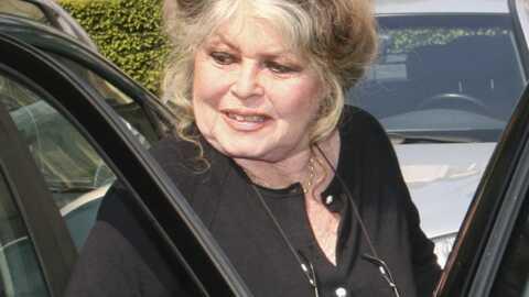 Brigitte Bardot: candidature à la Présidentielle démentie