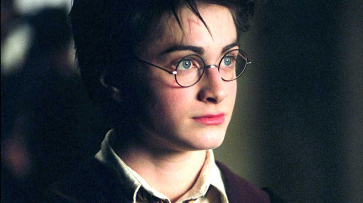 Audiences: TF1 largement leader avec Harry Potter