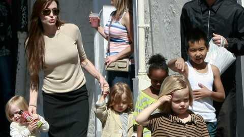 Brad Pitt: une famille nombreuse? Il assume