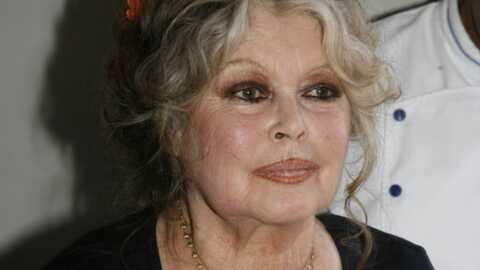 Brigitte Bardot: «pas de film sur moi»