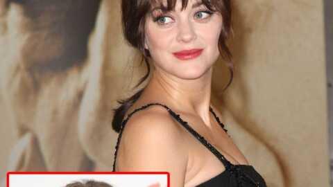 Marion Cotillard remplacée par Keira Knightley pour Cosmopolis