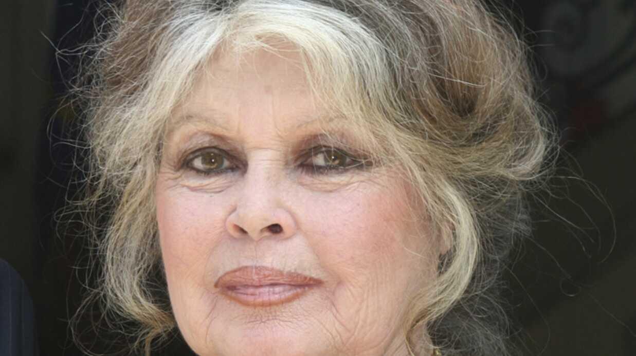 Brigitte Bardot porte plainte contre deux ministres