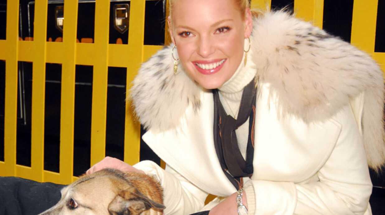 Katherine Heigl: pas de chiens à la maison