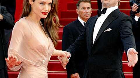 Brad Pitt et Angelina Jolie: 4,3 millions d'euros de dons en 2008