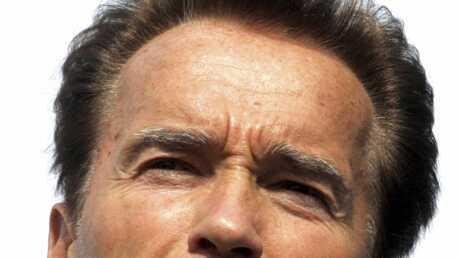 Arnold Schwarzenegger n'a pas payé ses impôts