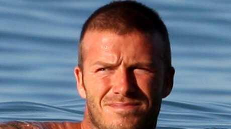 David Beckham Quand la chatte n'est pas là…