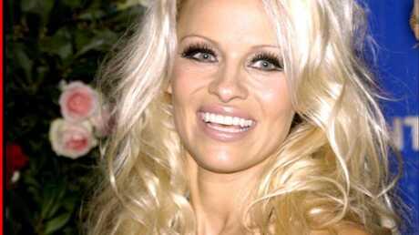 Pamela Anderson En pré-retraite