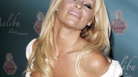 Pamela Anderson enregistre un single : High