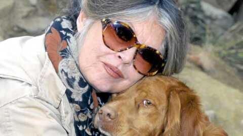 Brigitte Bardot attaque Sarah Palin