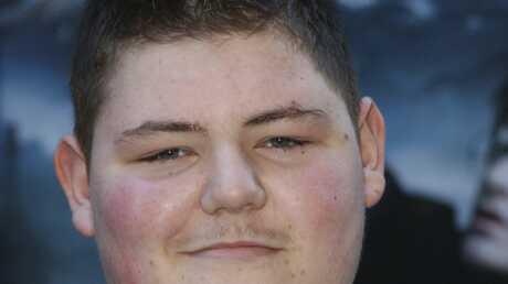 Harry Potter: un acteur condamné pour culture de cannabis