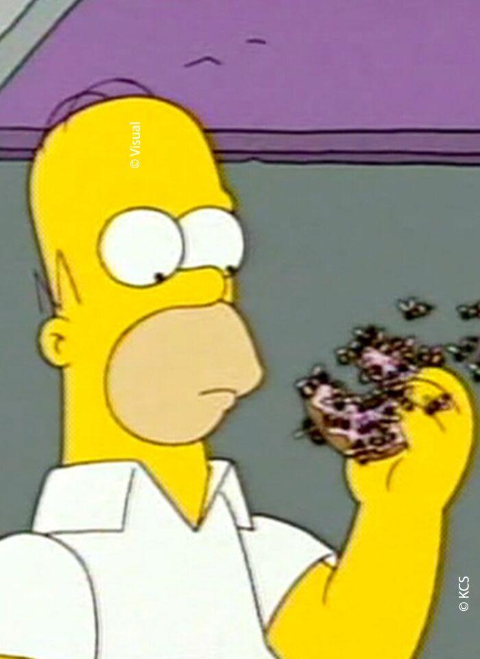 Homer Simpson Drogué à Son Insu Voici