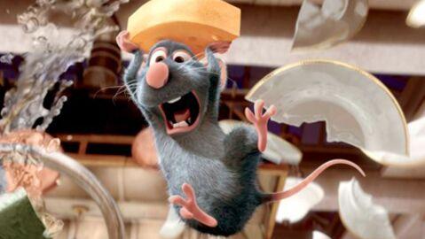 Audiences:  les rats de TF1 ont tout dévoré