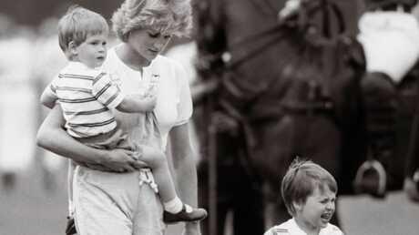 Mariage: le discours du prince Harry fait pleurer William