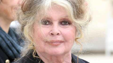 Brigitte Bardot Elle brise la glace