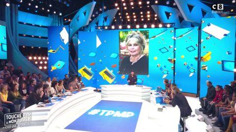 VIDEO L'équipe de TPMP répond avec virulence aux attaques de Brigitte Bardot