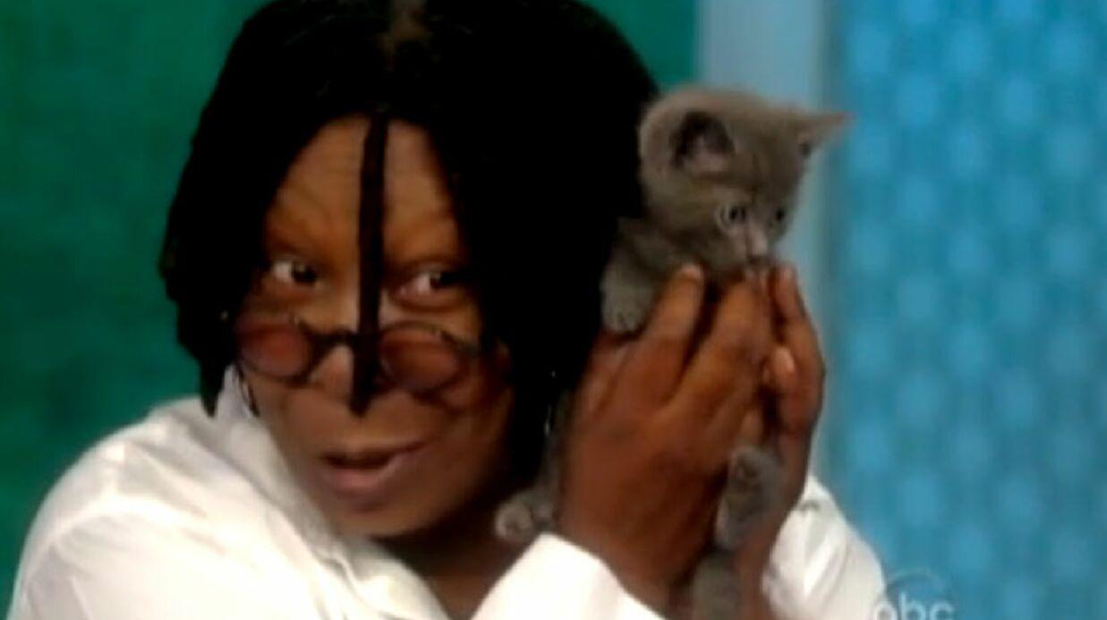 VIDEO Whoopi Goldberg adopte un chaton sauvé par miracle