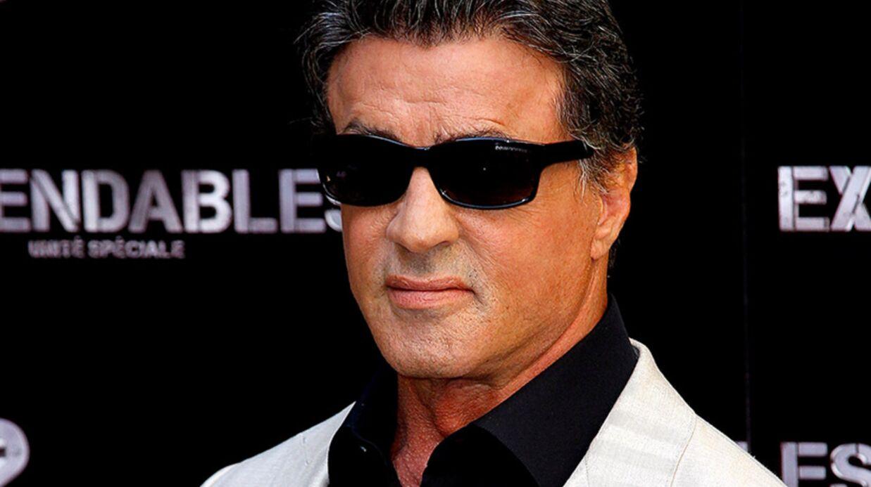 Sylvester Stallone condamné pour avoir dérangé des chauve-souris