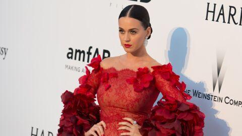 Katy Perry est la célébrité avec le plus de followers sur Twitter