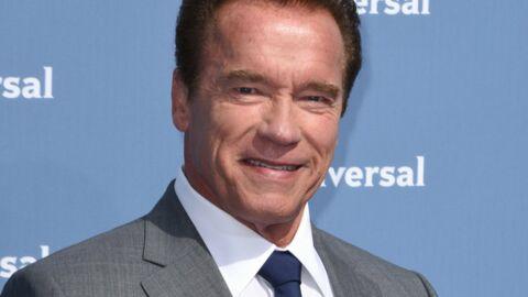 VIDEO Arnold Schwarzenegger se fait charger par un éléphant (mais ne lui en veut pas)
