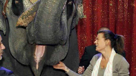 Stéphanie de Monaco accueille deux éléphantes sur le Rocher