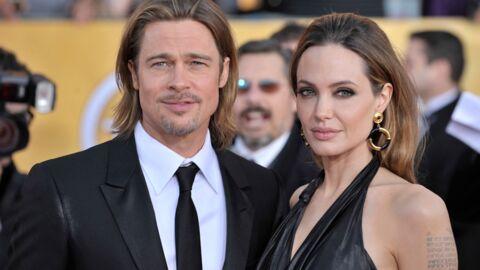 Brad Pitt et Angelina Jolie agrandissent leur domaine de Miraval