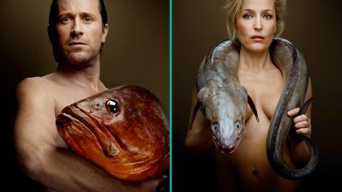 DIAPO Thomas Dutronc, Gillian Anderson et d'autres stars posent nus avec des poissons
