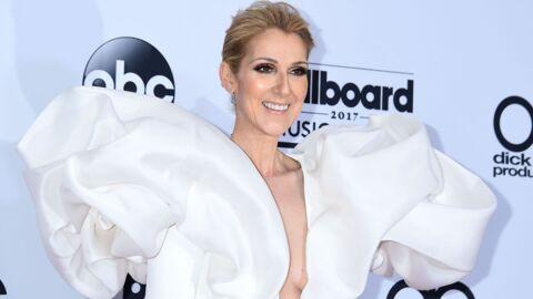 PHOTO Céline Dion nue dans Vogue: elle est canon!