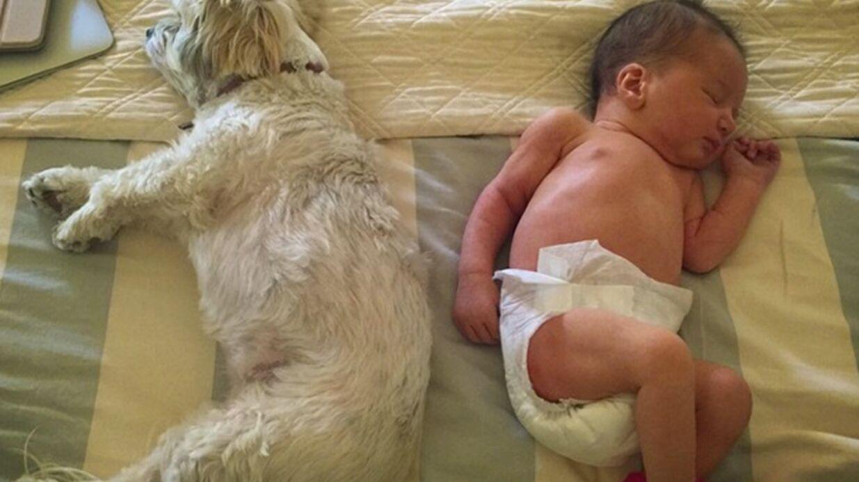 PHOTOS Milla Jovovich dévoile de nouveaux clichés de sa fille Dashiel