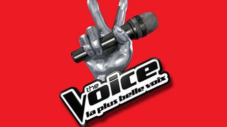 The Voice: découvrez le salaire des membres du jury