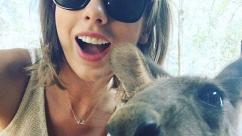PHOTOS Taylor Swift : pause selfie avec un kangourou