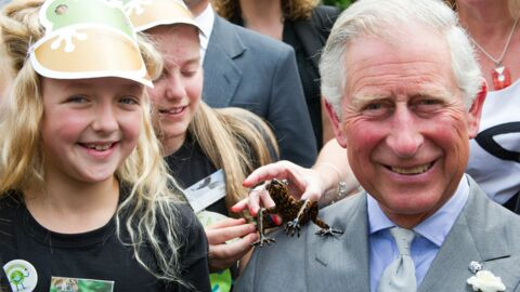 Vous voulez voir la rainette du Prince Charles?