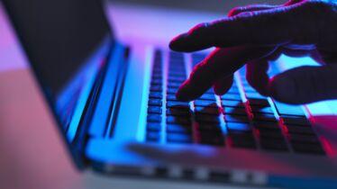Des frenchies ciblées par les hackers
