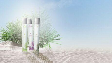 IXXI lance sa première ligne d'eaux parfumées