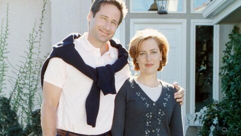 Gillian Anderson et David Duchovny (X-Files) ensemble ?