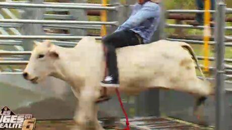 Résumé des Anges de la téléréalité 6: Thibault se fait démonter par une vache