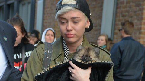 Miley Cyrus a beaucoup souffert de sa rupture avec Liam Hemsworth