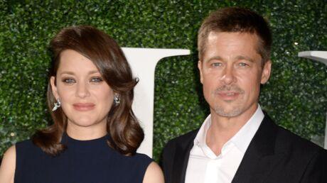 PHOTOS Brad Pitt et Marion Cotillard complices pour le premier red carpet de l'acteur après son divorce